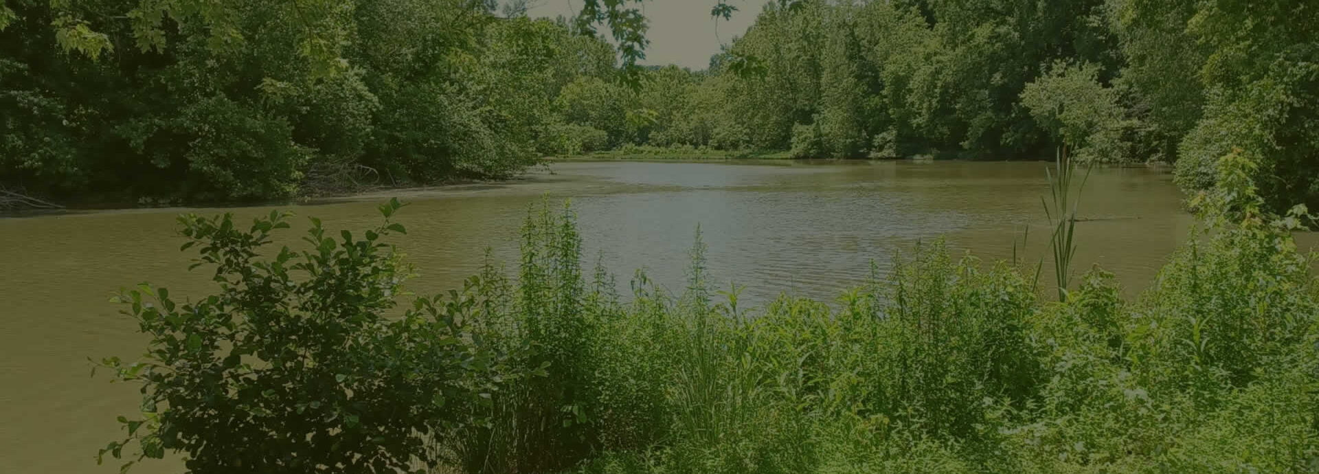 RV camping-Little Bear Island Campground in Greenup, Kentucky